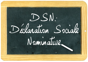 Declaration Sociale Nominative Abc Comptabilite